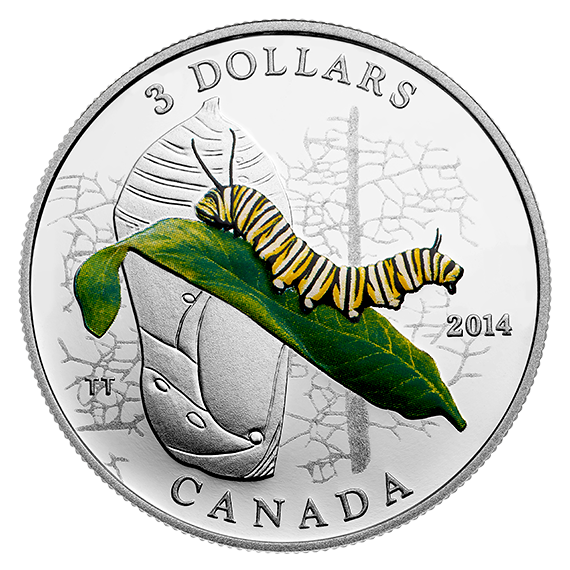 2014 - $3 Fine Silver Coin - Animal Architects - Caterpillar and Chrysalis